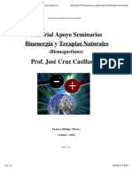 parbiomagnetico JOSECRUZ.pdf