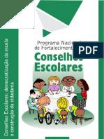 Conselhos escolares 1.pdf