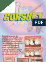 50437671 Curs 1 Tehnici Moderne de Tratament Diga Materiale Obtu