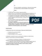 Diabetes Mellitus Tipo 2 Resumen