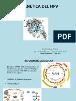 Epigenetica Del HPV (1)
