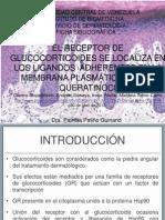 Ficha Patricia Patiño Guinand