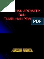 tumbuhanaromatik-120227225509-phpapp02