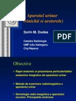 Radiologie aparat renal