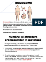 4. Cromozomii