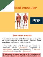 contracción muscular10