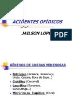 ACIDENTES OFDICOS