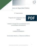 Unidad 3. El Papel de La Socializacion en La Criminalidad Criminalizacion