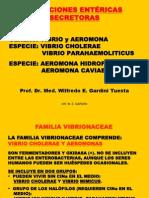 Vibrio y Proteus