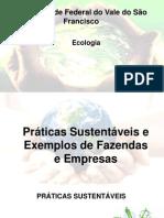 Seminário Ecologia