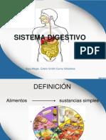 Sistema Digestivo Actual