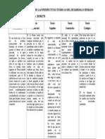Cuadro Comparativo Sobre Las Perspectivas Teóricas Sobre El Desarrollo Humano