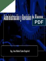 Administracion y Revision de Riesgos