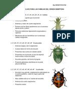 hemipteraneuropteraycoleoptera-130701231242-phpapp01