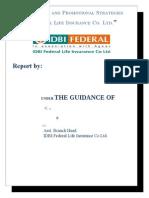 Marketing Strategies of IDBI Federal.