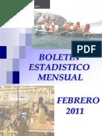 2011 02 Boletin Estadistico Febrero