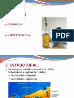 LIPIDOS SEMITERMINADO1