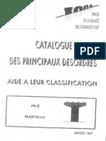 Catalogue Désordres Piles Marteau
