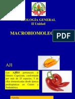 2_1carbohidratos