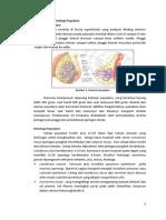 Anatomi Dan Histologi Payudara