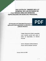 Principios de Procesal General Inea