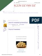 Elaboración de Pan de Yuca