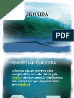GLIKOSIDA 2