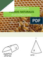 Youblisher.com-677205-Estructuras Naturales Para La Arquitectura