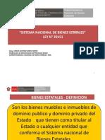 Sistema Nacional de Bienes Estatales - Carlos Garcia