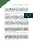 Resumen 2 - Ambiente Organizacional