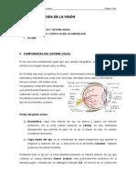 Tema Vi. Fisiología de La Visión