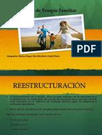 Tecnicas_Terapeuticas (1)
