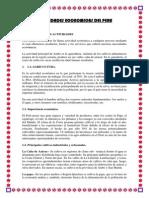 Actividades Economica Del Peru