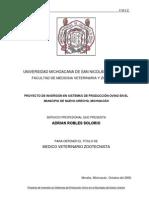 Proyecto de Inversion en Sistemas de Produccion Ovino en El Municipio de Nuevo Urecho, Michoacan