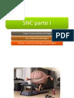 sncI.pptx