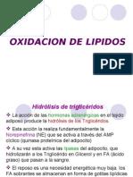 Oxidacion de Acidos Grasos 130222211619 Phpapp01