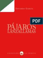 Luis Eduardo García - Pájaros Lanzallamas