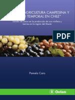 Pequeña Agricultura Campesina y Empleo Temporal en Chile 2009