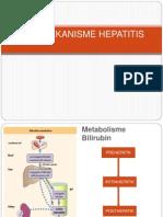 Patomekanisme Hepatitis