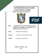 160465859 Plan de Marketing de Aguaymanto Original Ultimo Jose Bacilio Docx