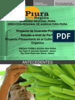 3.4 Pedro Quezada JNB - Proyecto Fitosanitario en El Cultivo de Banano