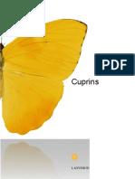 Cuprins sau raport