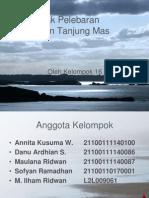 Dampak Perluasan Pelabuhan Tanjung Mas