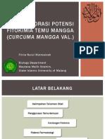 Eksplorasi Potensi Fitokimia Temu Mangga (Curcuma Mangga