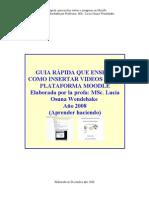 guiaincluirvideomodle2008
