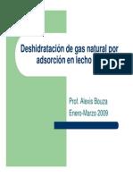 Deshidratacion de Gas Natural Por Adsorcion en Lecho Fijo