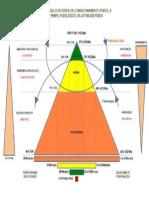Triangulo Condicionamento Fisico
