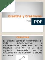 Creatina y Creatinina