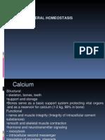 5319The Calcium Homeostatic System