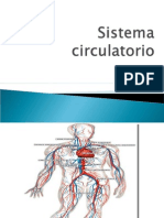 Sistema Circulatorio Power Point